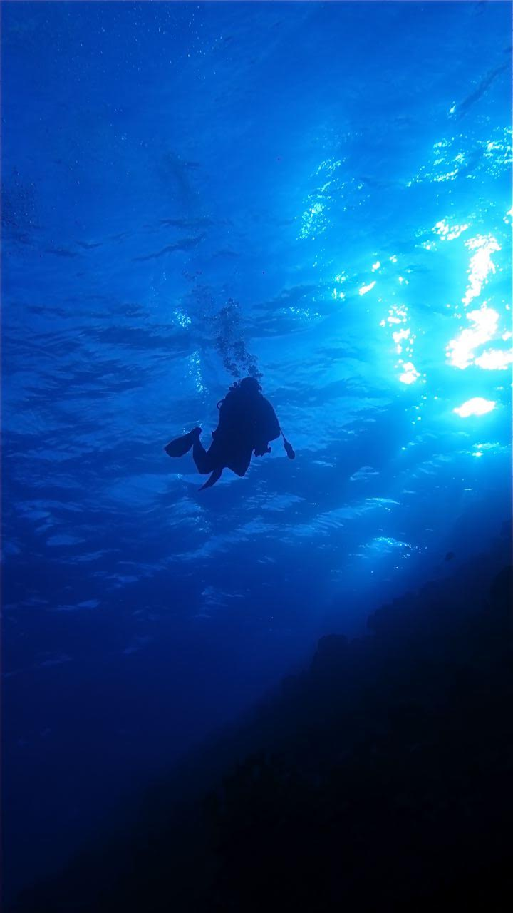 Molokini Crater Backwall – Diver